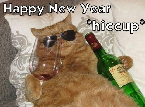 new years drunk cat